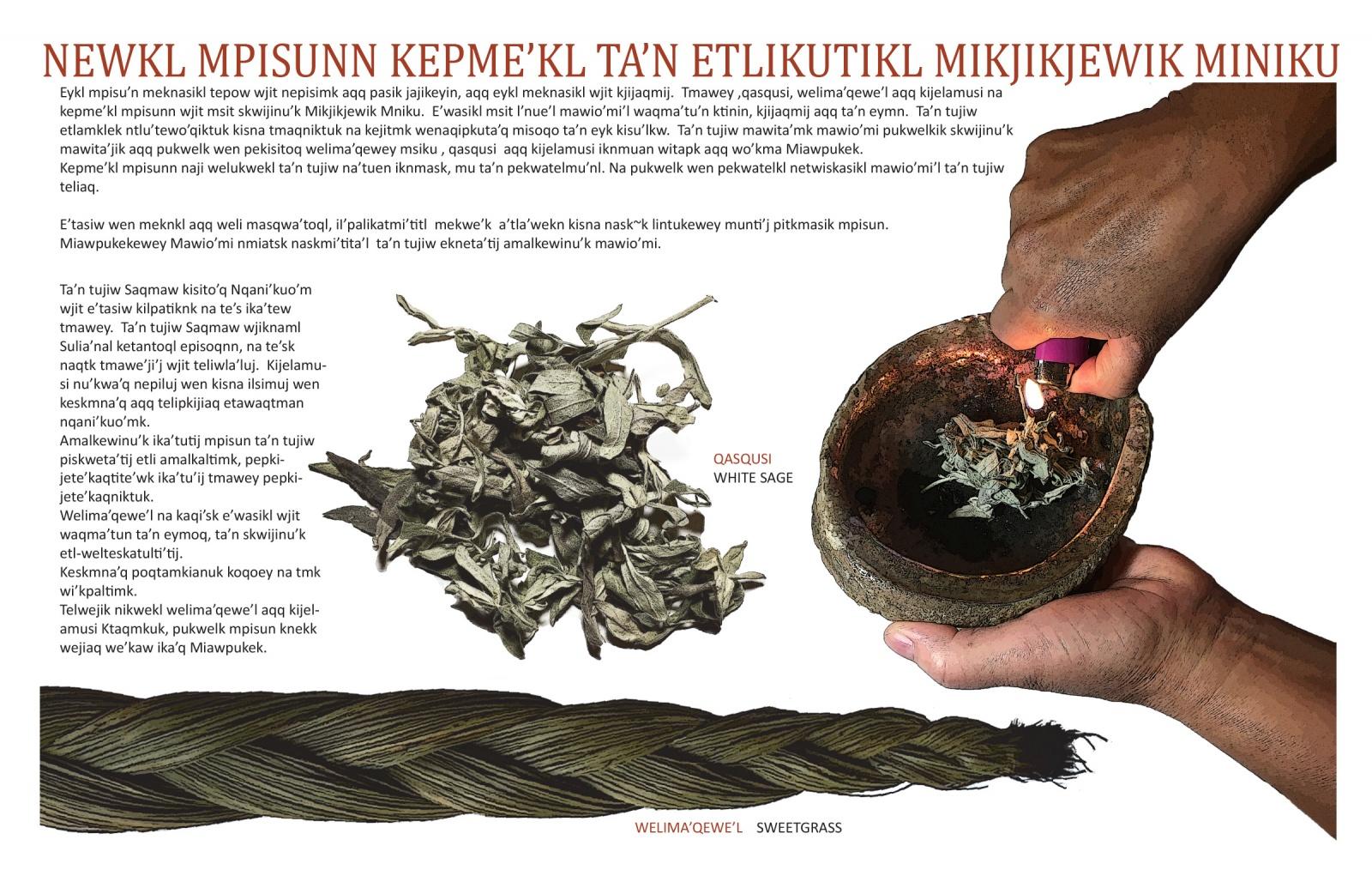 Newkl Mpisunn Kepme'kl Ta'n Etlikutikl Mikjikjewik Miniku
