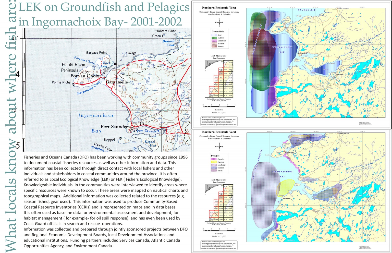 LEK on Groundfish and Pelagics in Ingornachoix Bay- 2001-2002