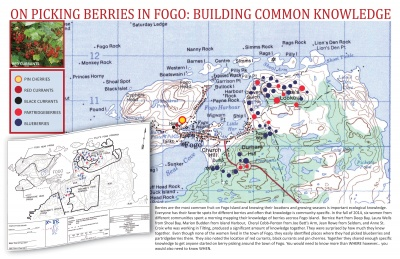 On Picking Berries in Fogo: Building Common Knowledge