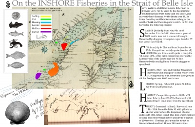 On the Inshore Fisheries in the Strait of Belle Isle