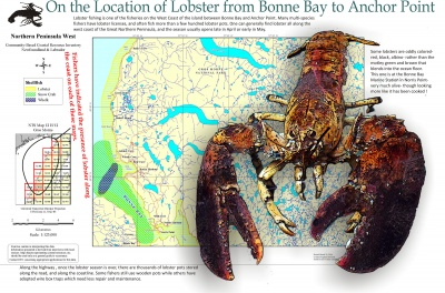 On the Location of Lobster from Bonne Bay to Anchor Point
