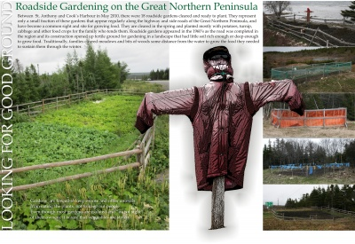 Looking for Good Ground: Roadside Gardening on the Great Northern Peninsula