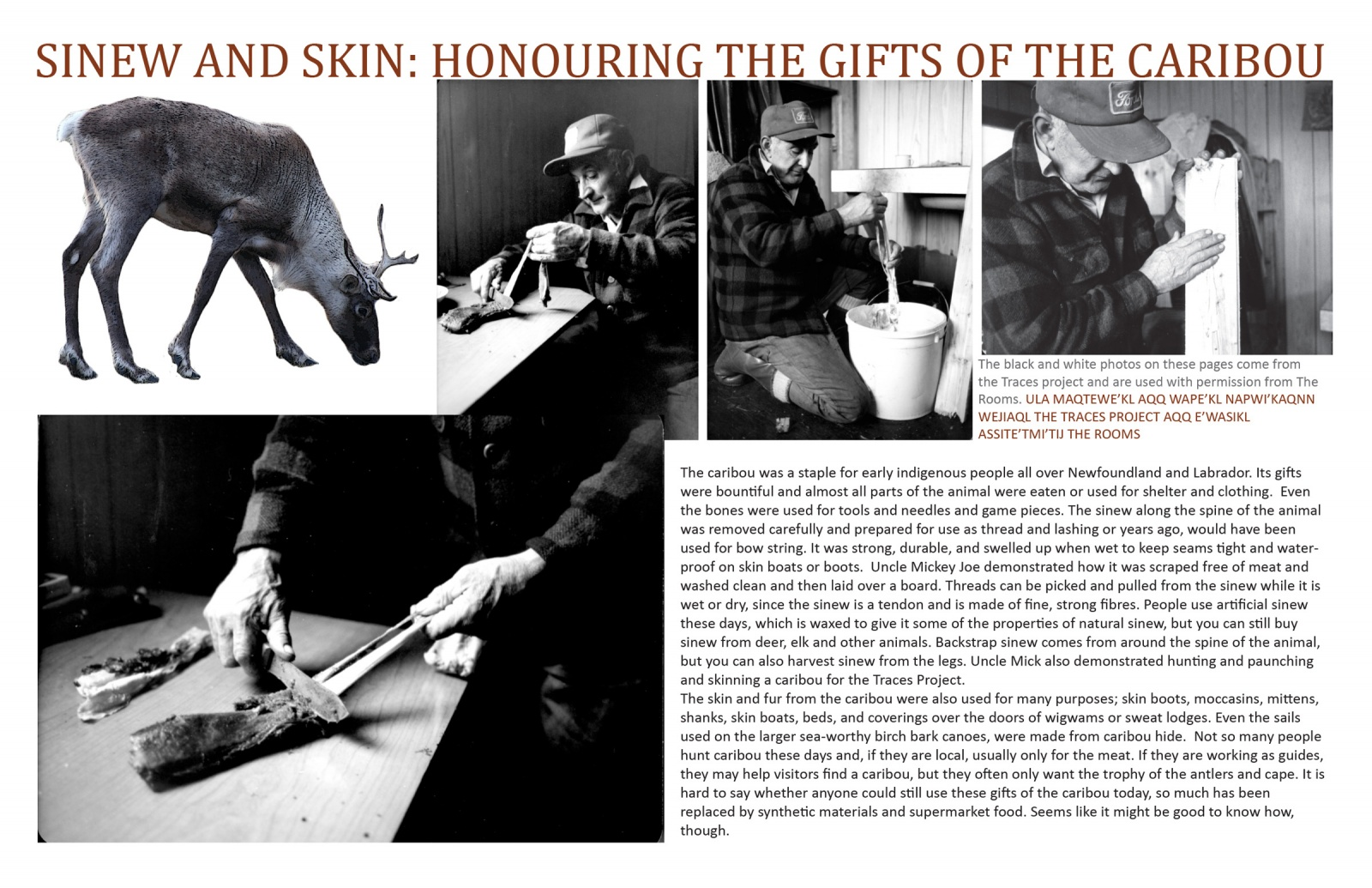 Sinew and Skin: Honouring the Gifts of the Caribou