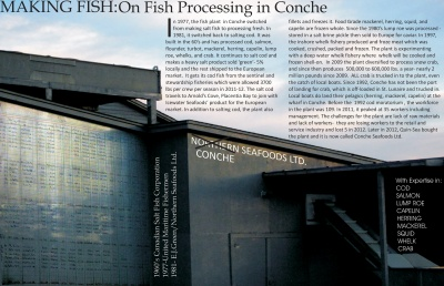 Making Fish: On Fish Processing in Conche