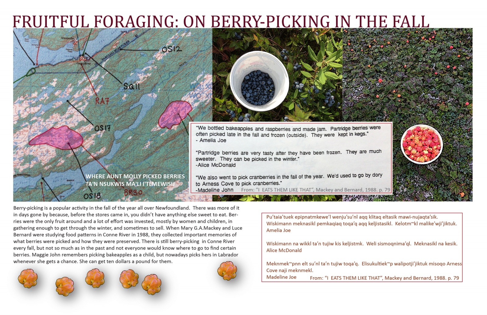 Fruitful Foraging: On Berry-picking in the Fall