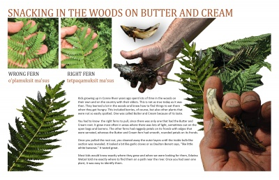 Snacking in the Woods on Butter and Cream