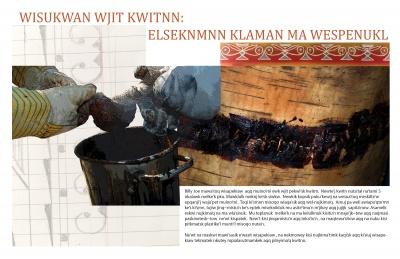 Wisukwan Wjit Kwitnn: Elseknmnn Klaman Ma Wespenukl