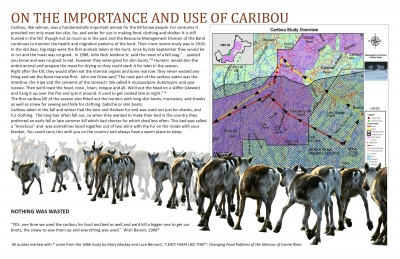 On the Importance and Use of Caribou