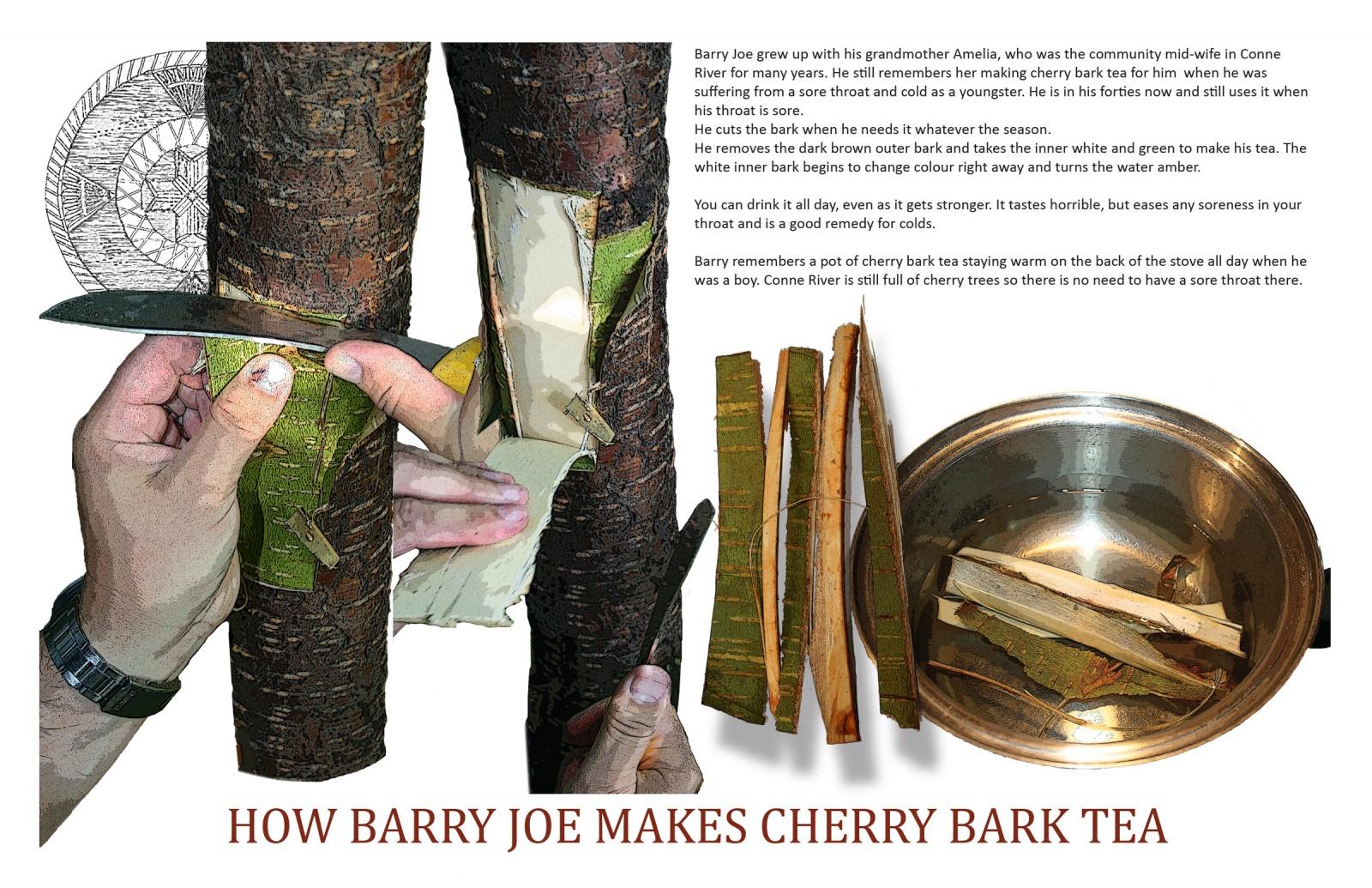 How Barry Joe Makes Cherry Bark Tea