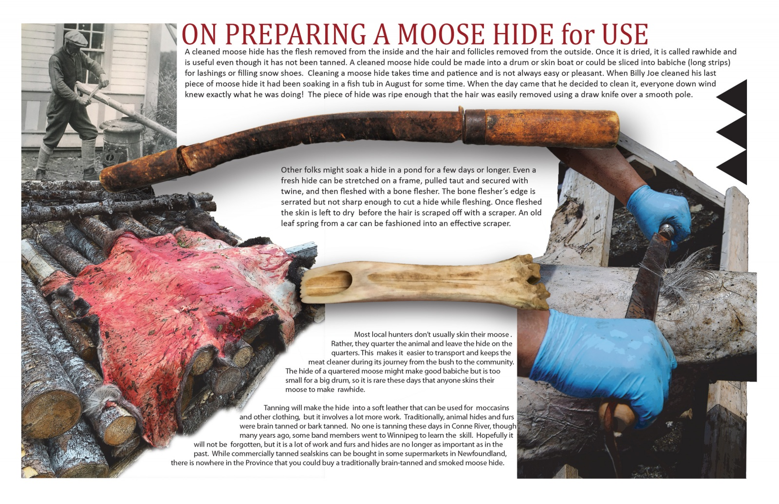 On Preparing a Moose Hide for Use