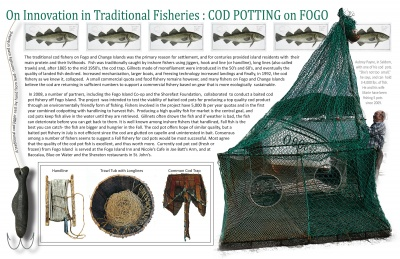 On Innovation in Traditional Fisheries: Cod Potting on Fogo