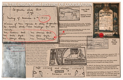 On the Origins and History of Cooperation