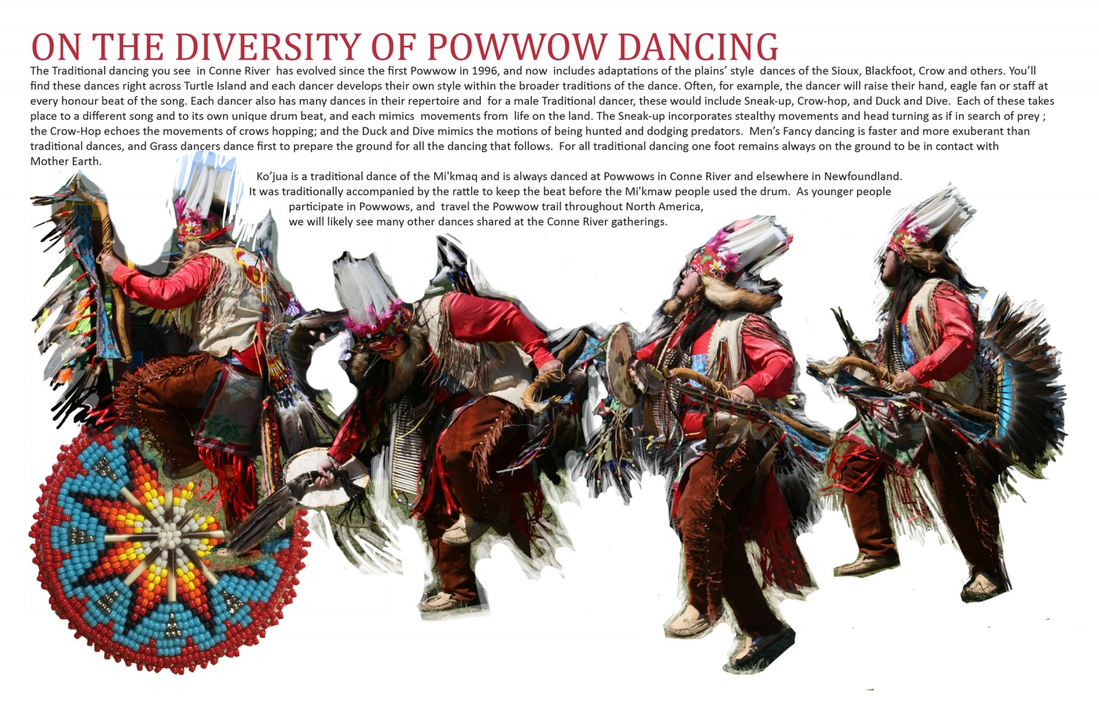 On the Diversity of Powwow Dancing