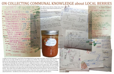 On Collecting Communal Knowledge about Local Berries