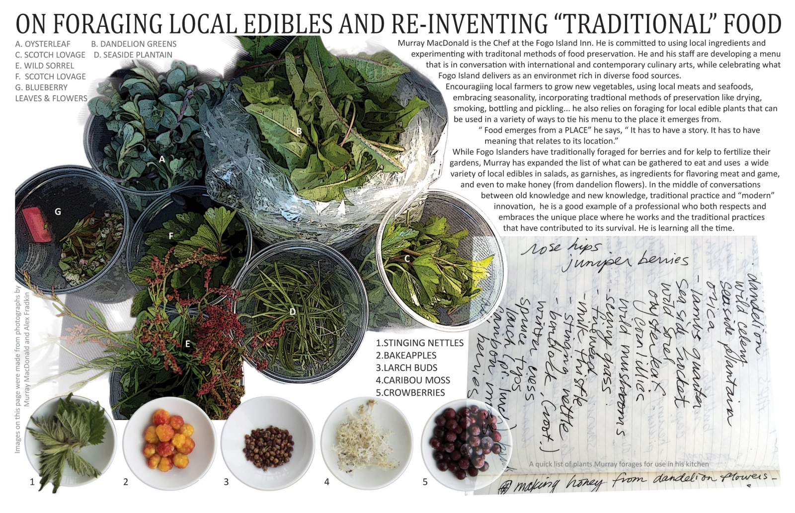 "On Foraging Local Edibles and Re-inventing ""Traditional"" Food"