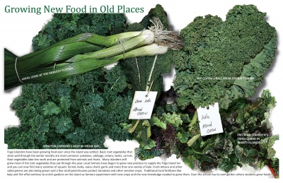 Growing New Food in Old Places