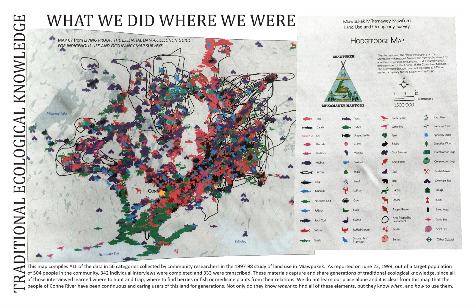 Traditional Ecological Knowledge: What We Did Where We Were