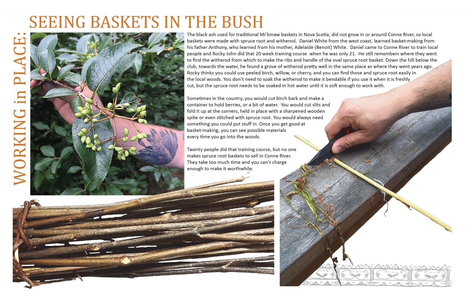 Working in Place: Seeing Baskets in the Bush