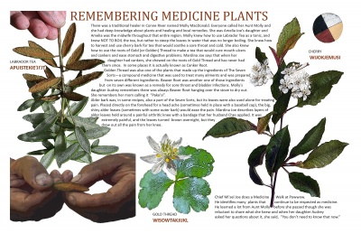 Remembering Medicine Plants