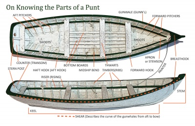 On Knowing the Parts of a Punt