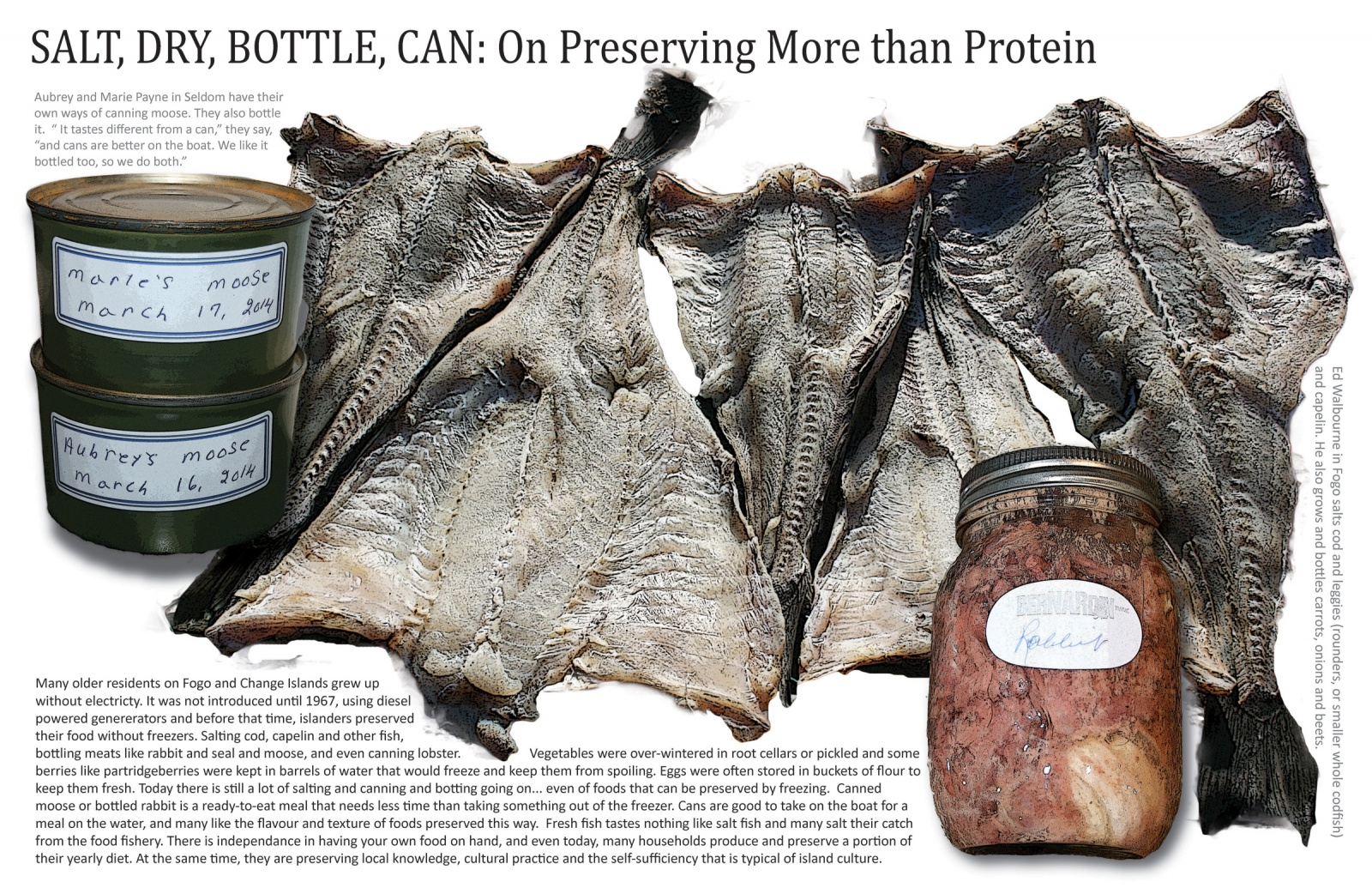 Salt, Dry, Bottle, Can: On Preserving More than Protein