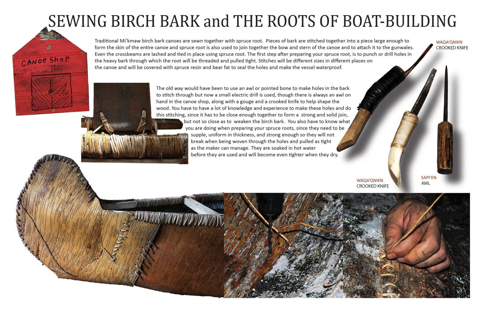 Sewing Birch Bark and the Roots of Boat-building