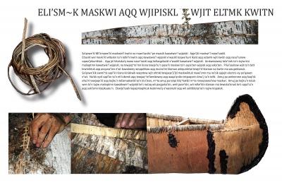 Eli'sm~k Maskwi Aqq Wjipiskl Wjit Eltmk Kwitn