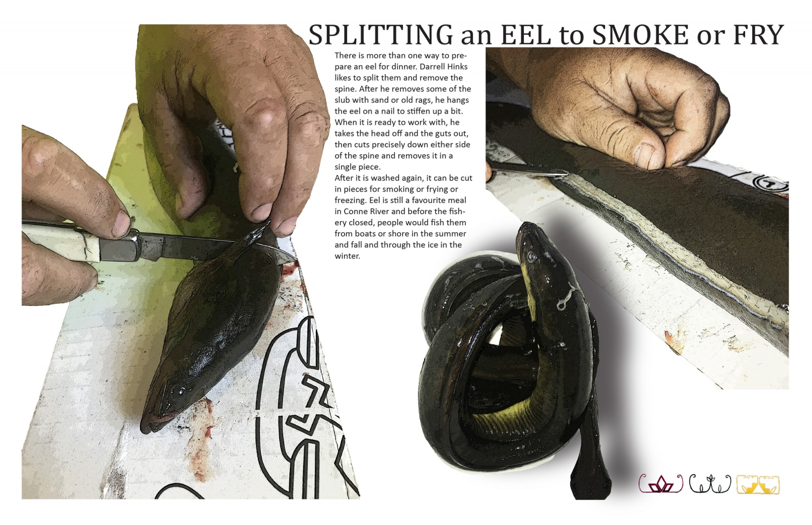 Splitting an Eel to Smoke or Fry
