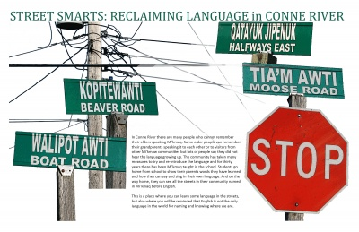 Street Smarts: Reclaiming Language in Conne River
