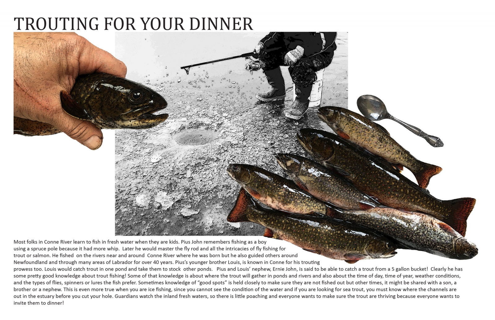 Trouting for Your Dinner
