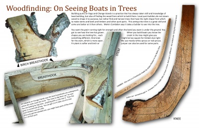 Woodfinding: On Seeing Boats in Trees